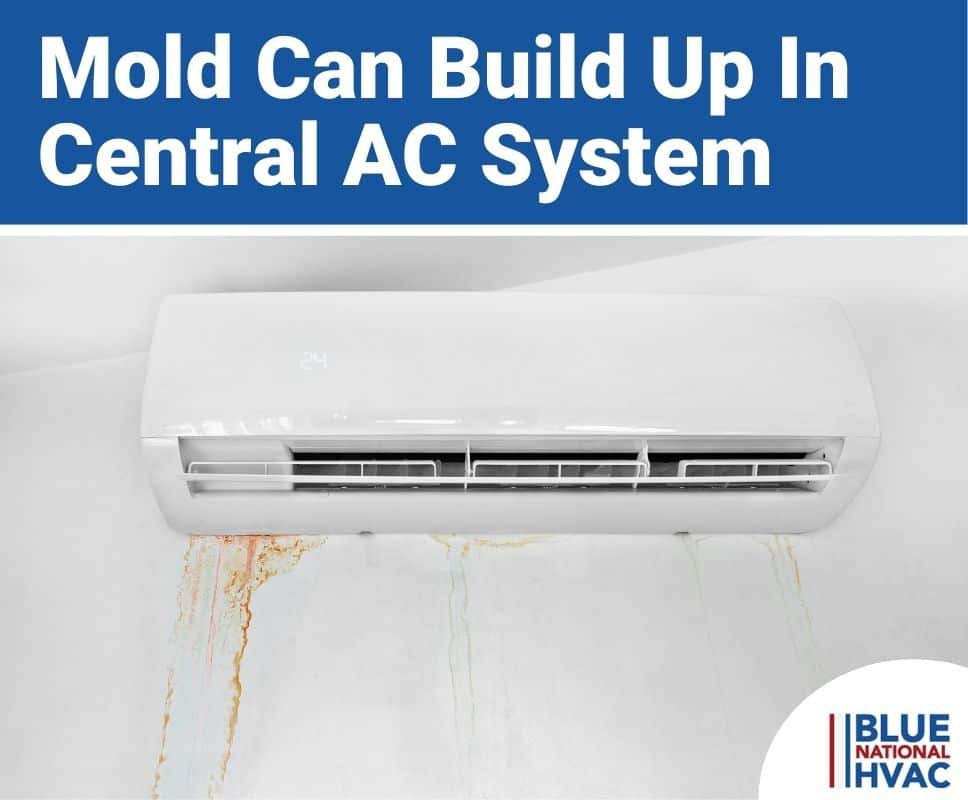 Mold Can Build Up In Central AC System